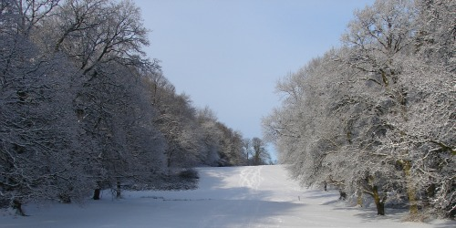Avondale Cairn Walk