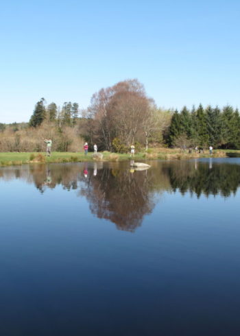 Annamoe Trout Fisheries