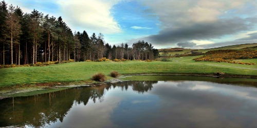 Macreddin Golf Course