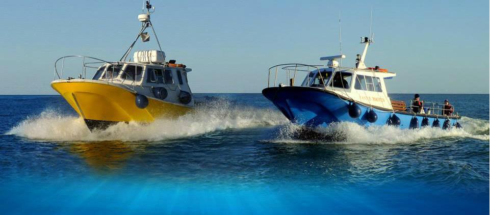Wicklow Boat Charters