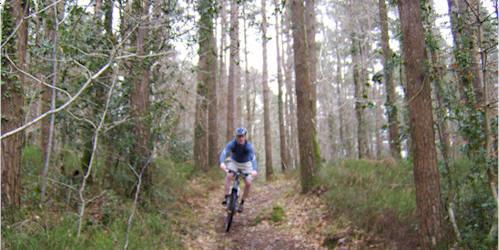 Ballinastoe Mountain Bike Trail