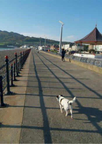 Bray Seafront Promenade & Bray Head
