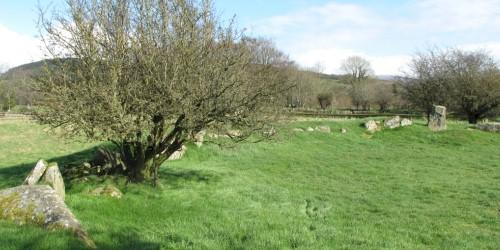 Castleruddery Stone Circle