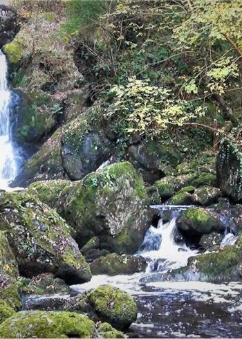 Devil's Glen – Waterfall & Seamus Heaney Walk
