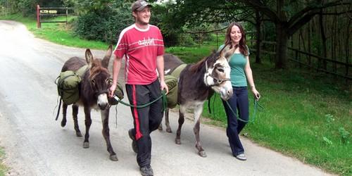 Clissman Donkey Walking Holidays