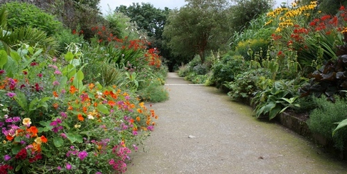 National Botanic Garden @ Kilmacurragh