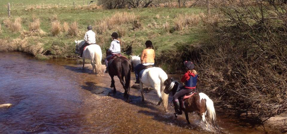 Hollywood Horse and Pony Trekking