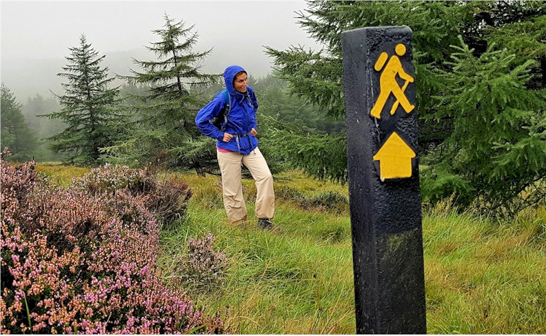 the-wicklow-way