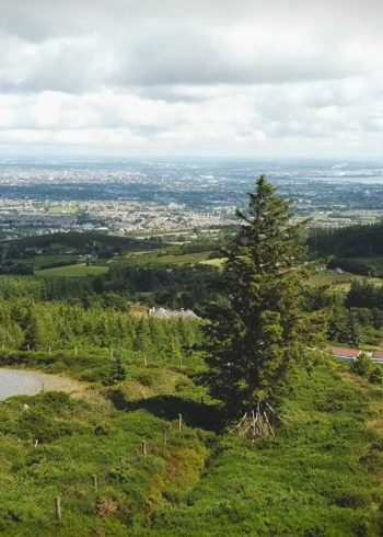 Wicklow Way – Section 1:  Marlay Park to Knockree