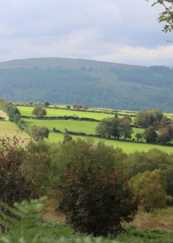 From Rathdrum to Bray:  Four Days walking the Wicklow Mountains